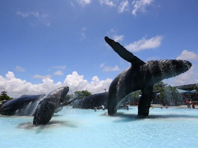 國立海洋生物博物館辦理寒期實習活動